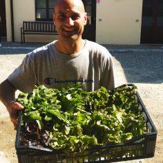 verdura a chilometro zero
